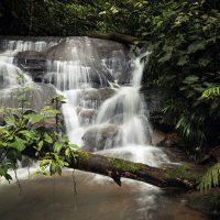 natur-reise-heilkunde-balance